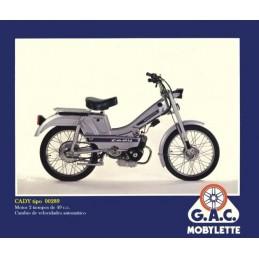 Juego Pegatinas Completo Kit de adhesivos motos clasicas Bultaco Frontera Gold Medal 250 Vinilo para Moto m/áxima Calidad.